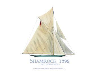 1899 Shamrock - signed print